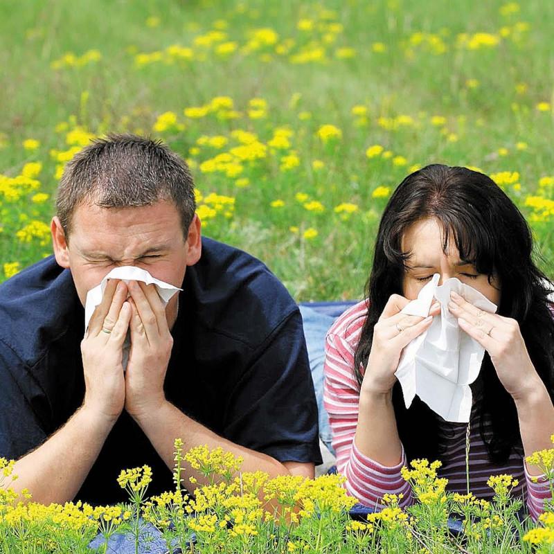 Осторожно, опасность! Аллергия на цветы, или какие цветы могут вызвать слезы?