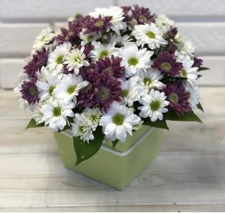 Композиция в коробке хризантемы фиолетовые и белые