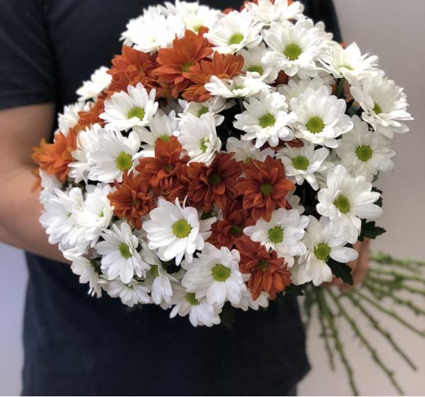 Букет из 15 белых и оранжевых хризантем
