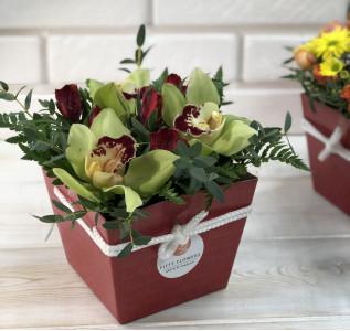 Композиция в коробке Красные орхидеи