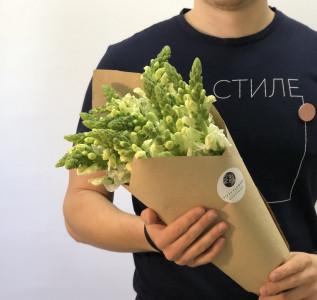 Букет Полевой антиринум (львиный зев) в упаковке