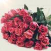 Розы в наличии