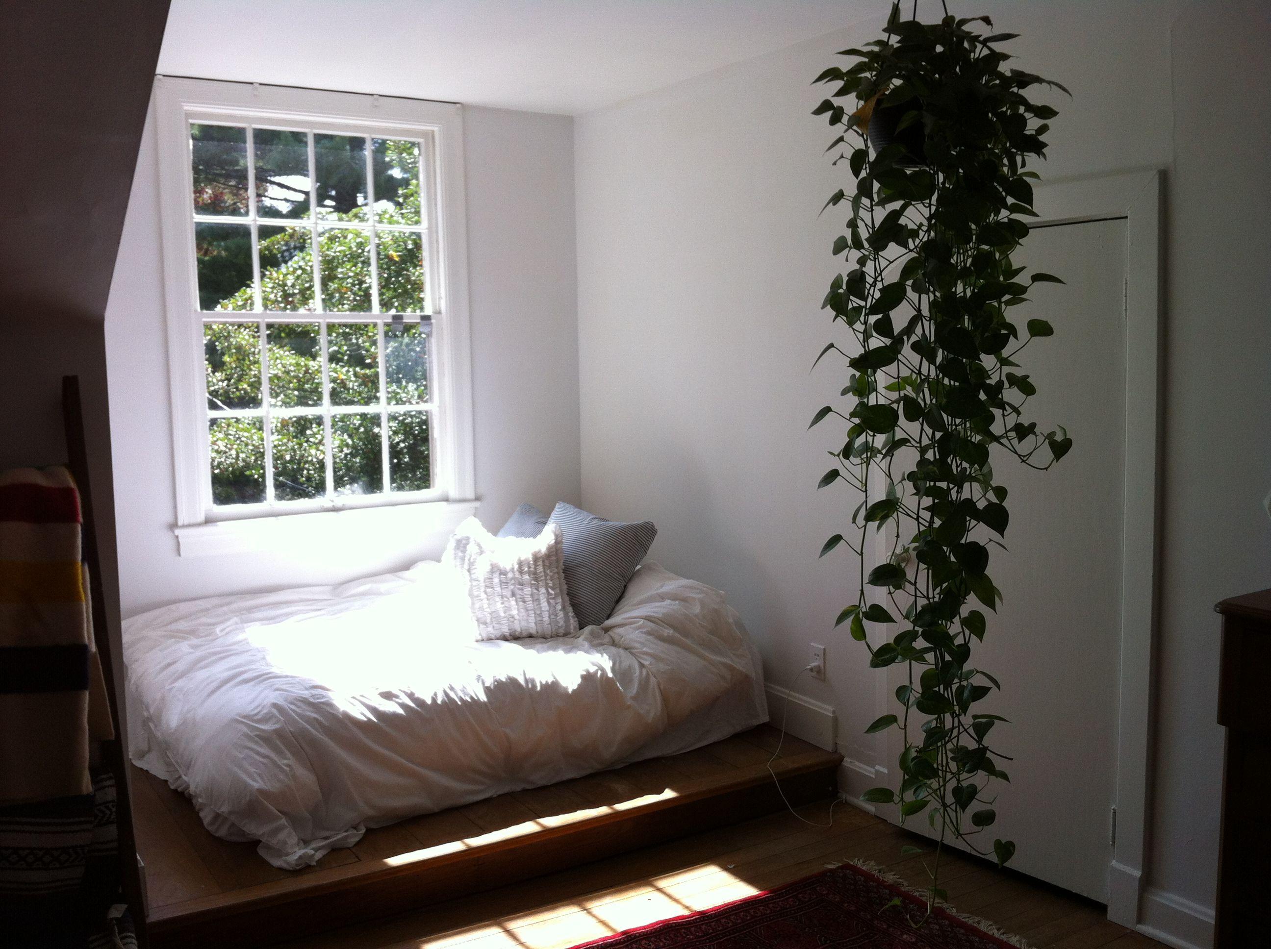картинки спальни растения может